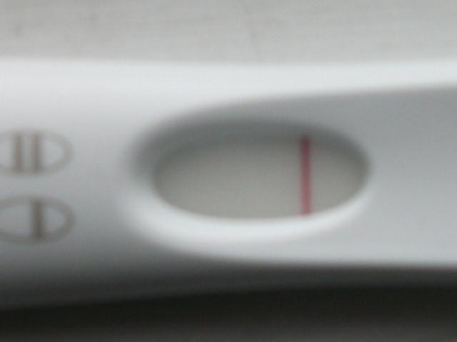 Embêtée par son test de grossesse...! Dscf4611