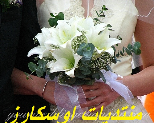 منتديات اوسكارز للعروسة