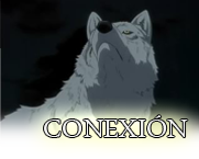 City of wolves Conexi11
