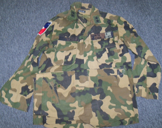 General Ermita's Uniforms Camo110