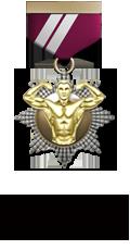 Состав. Звания. Награды Боевых Товарищей. Body10