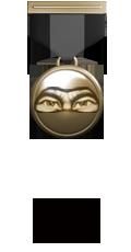 Состав. Звания. Награды Боевых Товарищей. Ninja10