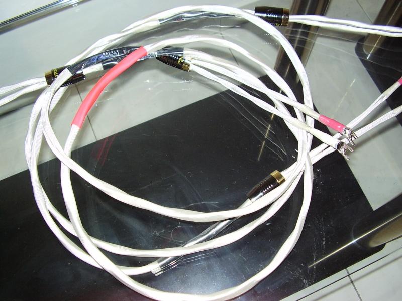 AIRTECH EVO Strong potenza P1290010