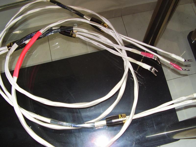 AIRTECH EVO Strong potenza P1290014