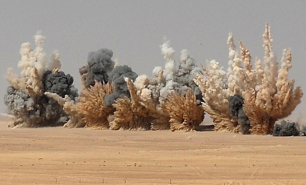 Armée des Emirats Arabe Unis N3nqis10