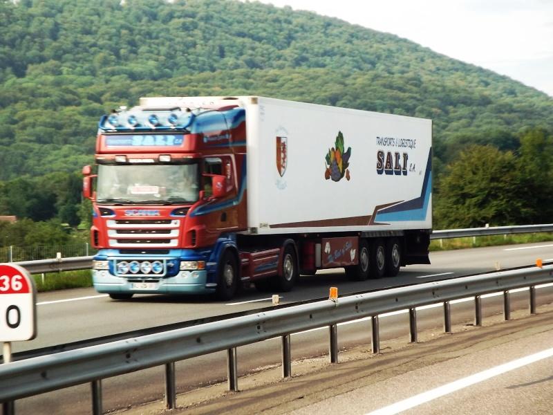 Sali (Thal-Marmoutier, 67) Scania10