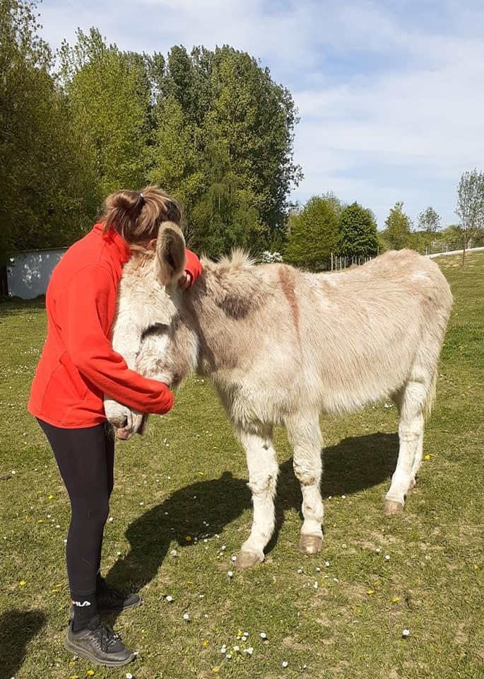 POTIRON - ONC âne né en 2001 - adopté en juin 2020 par Valérie Potiro12