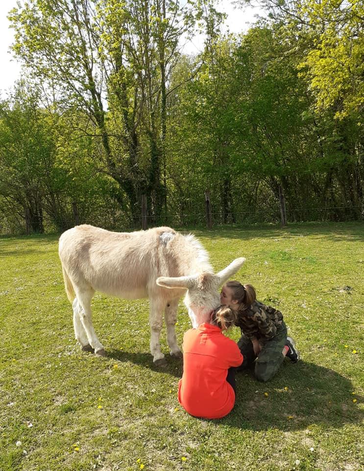 POTIRON - ONC âne né en 2001 - adopté en juin 2020 par Valérie Potiro13