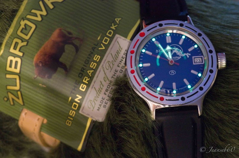 vostok - Elle est arrivée ! Vostok Amphibia 2012_034