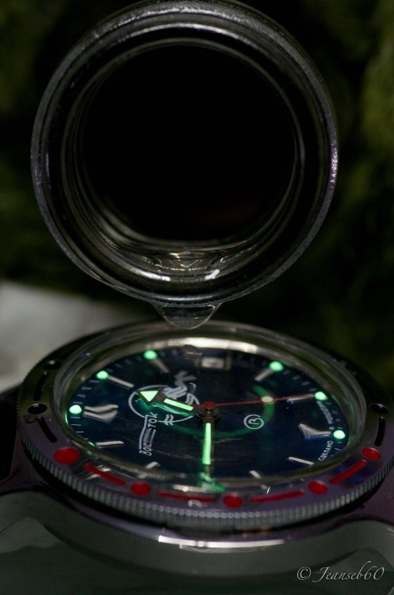 vostok - Elle est arrivée ! Vostok Amphibia 2012_040