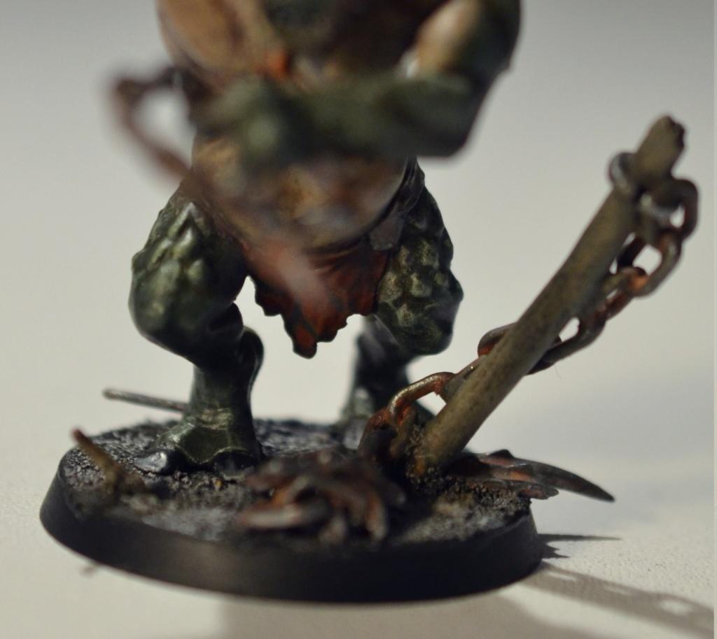 [Andrann i ùan - Novice] - Hog, Troll des Cavernes Concou13