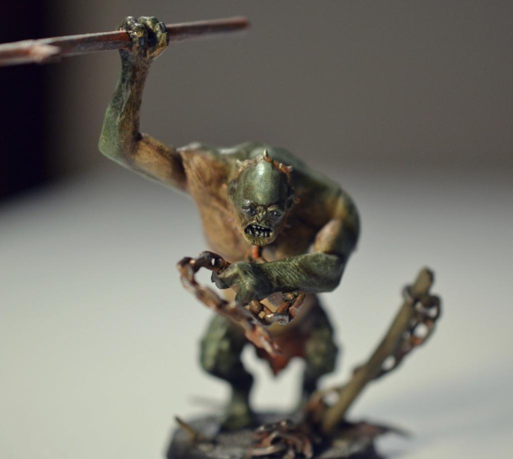 [Andrann i ùan - Novice] - Hog, Troll des Cavernes Concou17