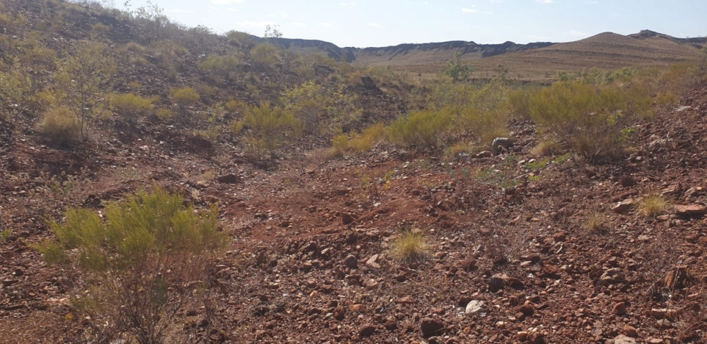 Karratha Conglomerate Gold Comet_18