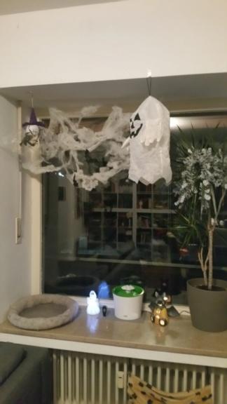 Halloween Deko  20181015
