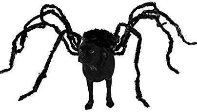 Halloween Verkleidung  Hund10