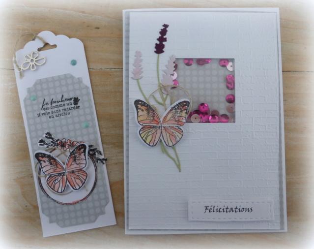 Defi carterie N°5 carte + marque pages P1110512