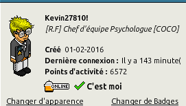 [ C.H.U] Rapports d'activités  [Kevin27810] - Page 38 Captu499