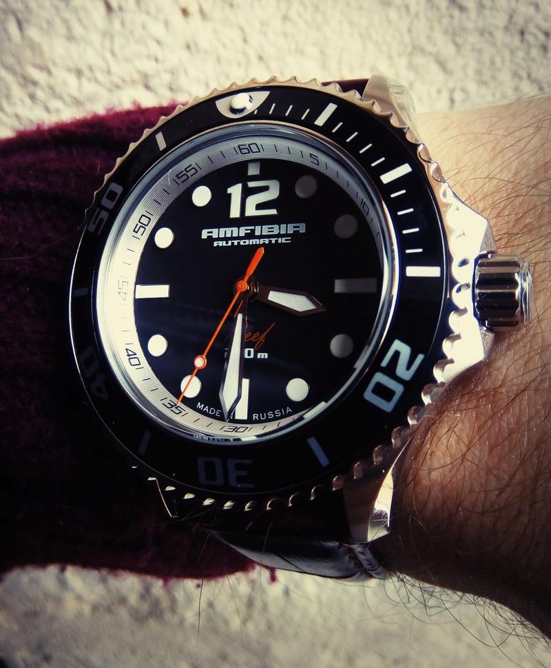 [Vendu] Lot Vostok Amfibia Reef + Vostok Amphibia Img_2058