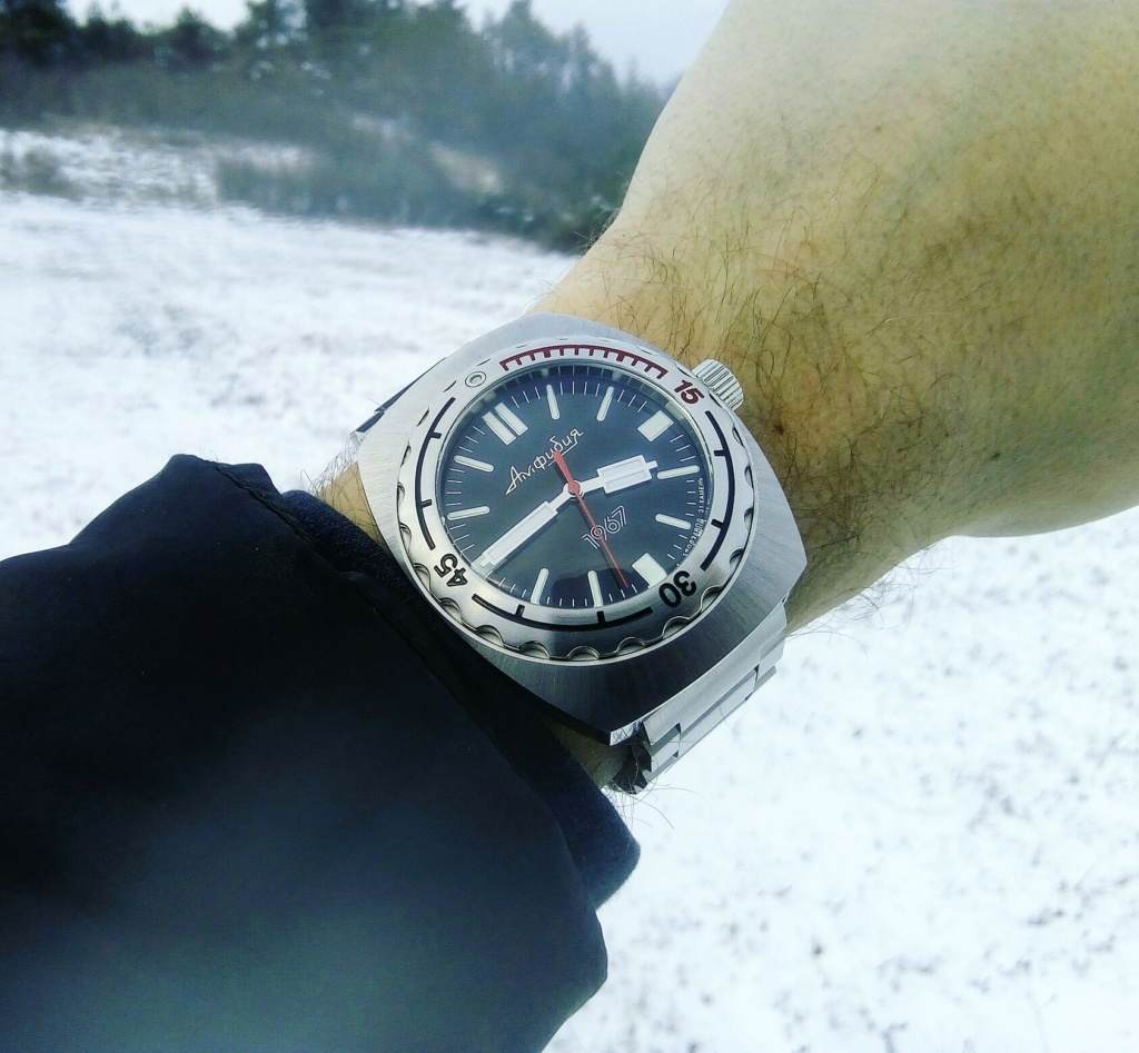 [Vends ou échange] Vostok amphibia 1967 Img_2095