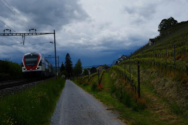 La Route des lacs - Suisse [7 au 12 juin] saison 14 •Bƒ Dscf7711