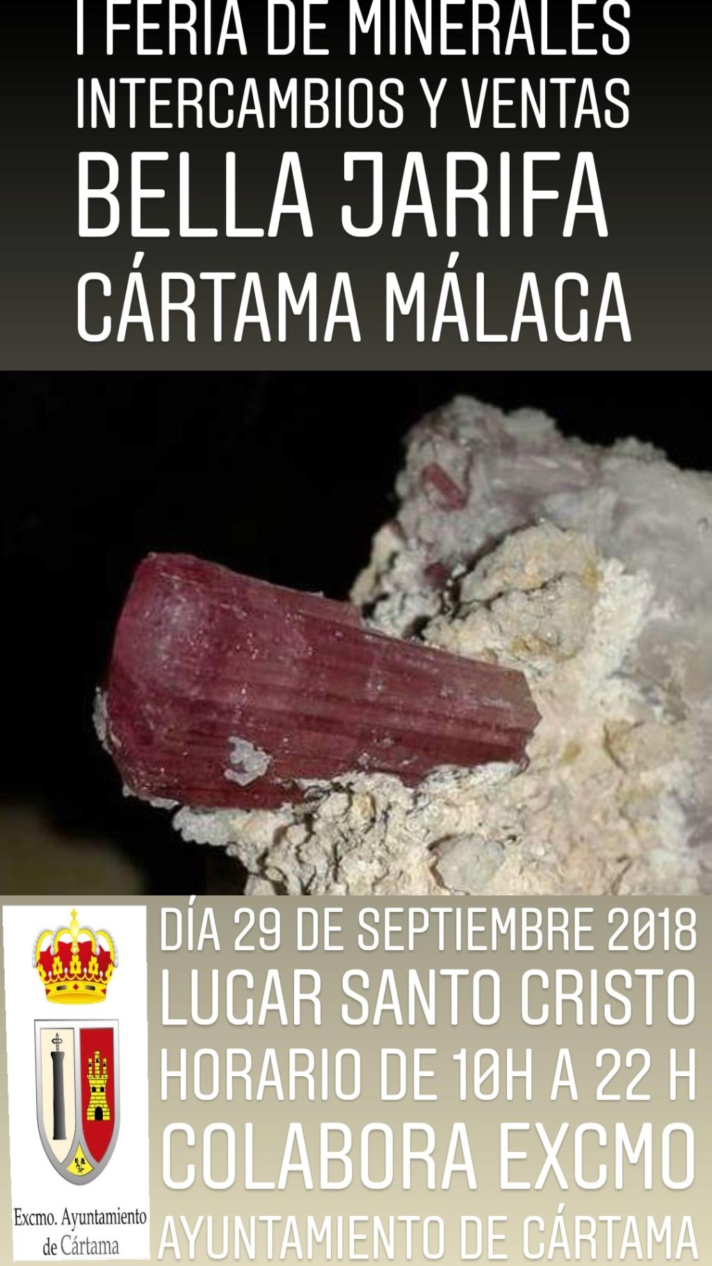 I Feria de minerales intercambio y venta de Cártama (MÁLAGA) 20180511