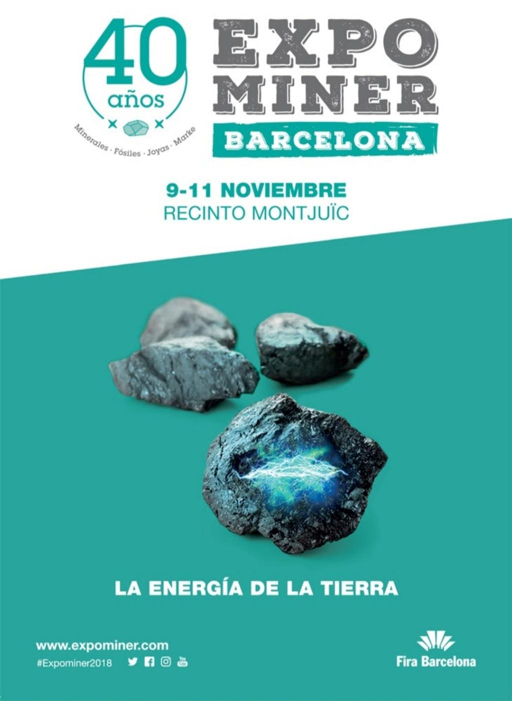 Ferias mes de Noviembre 20181113