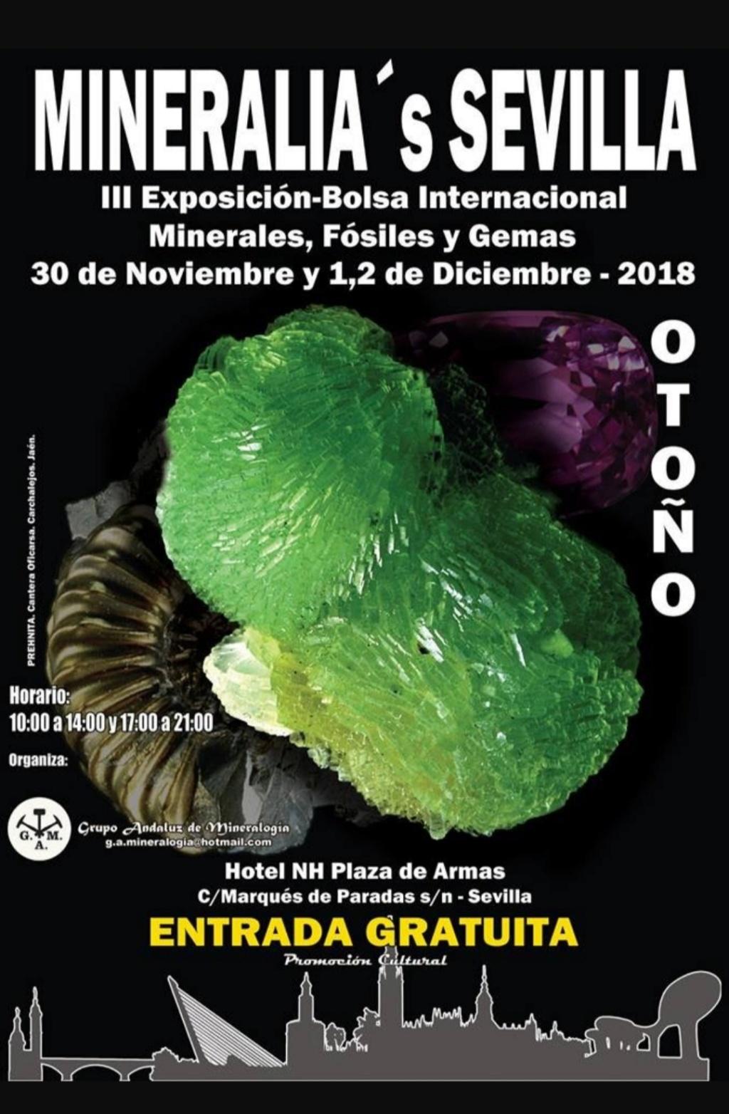 Ferias mes de Diciembre 20181118