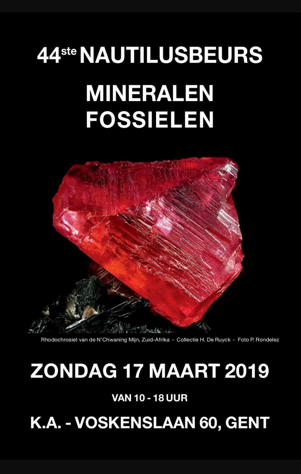 Ferias y eventos de Marzo 2019 20190216