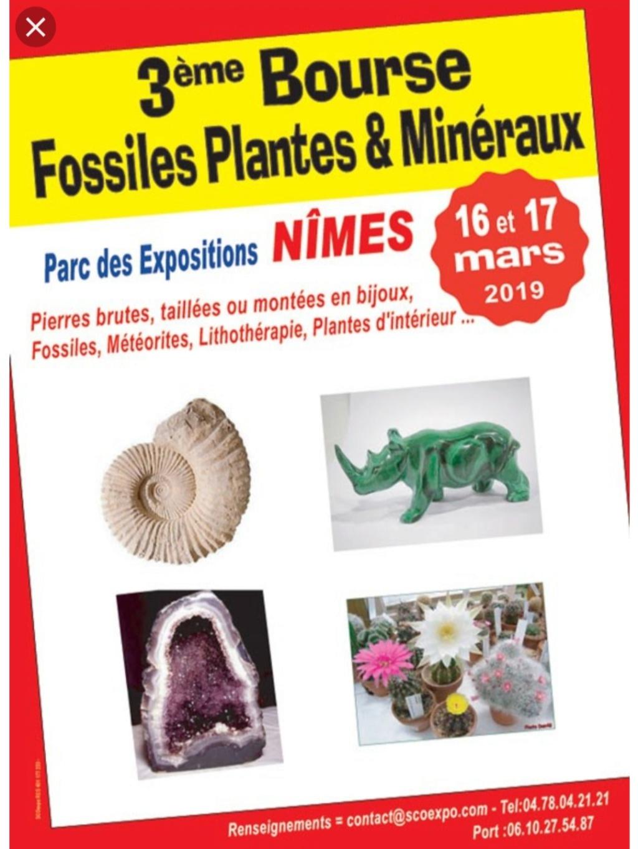 Ferias y eventos de Marzo 2019 20190226
