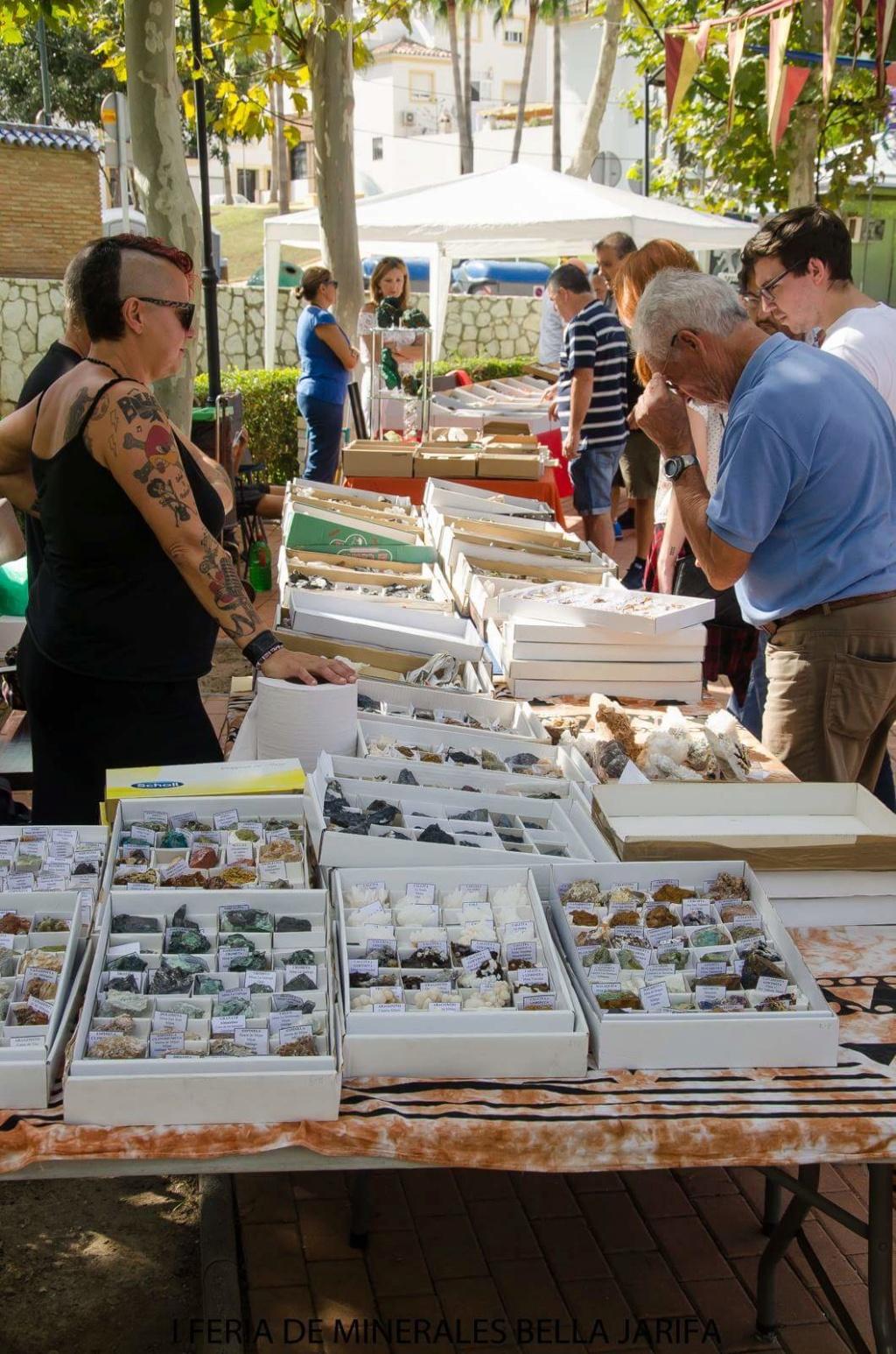 I Feria de minerales intercambio y venta de Cártama (MÁLAGA) - Página 6 Fb_im118