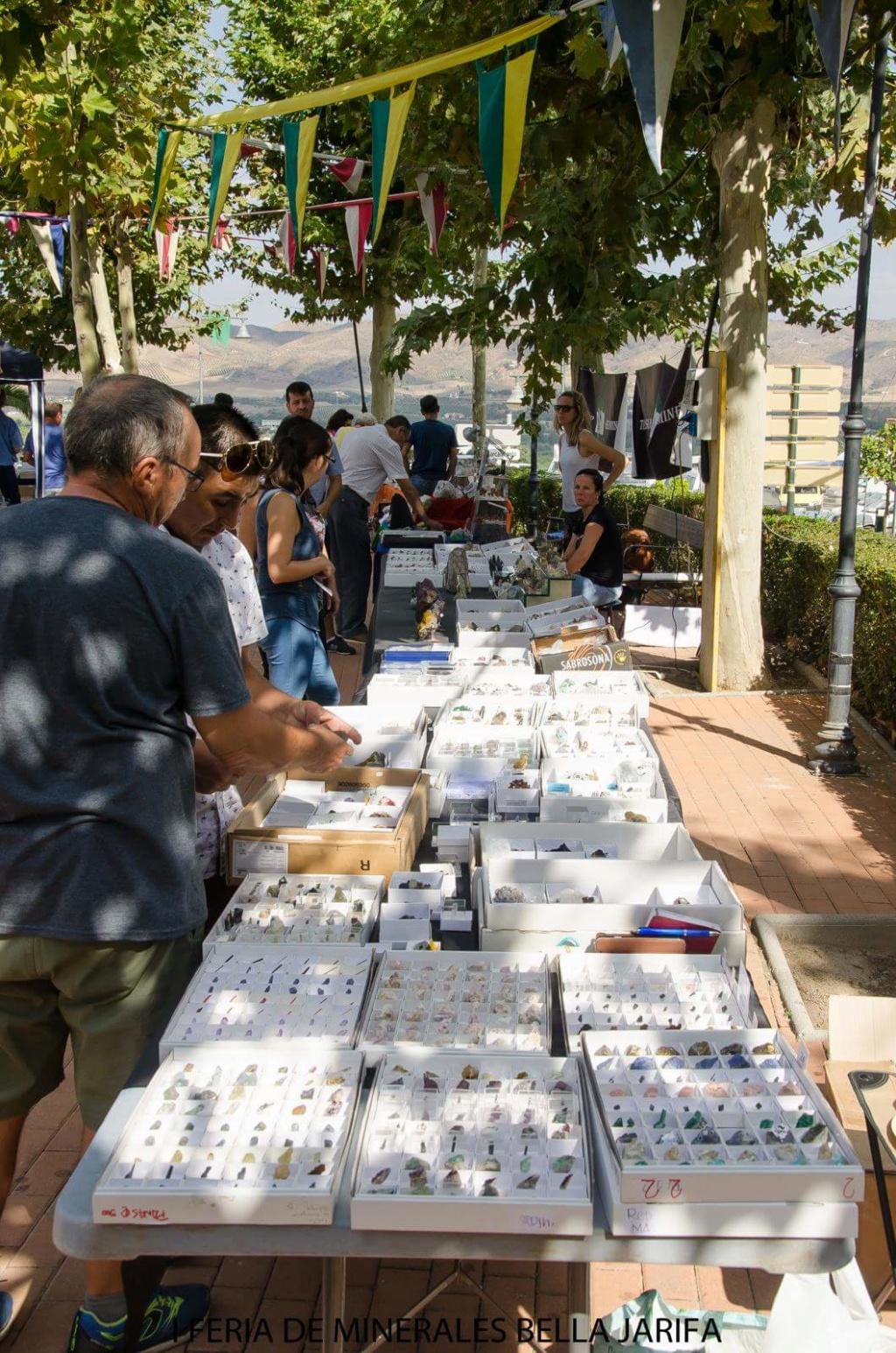 I Feria de minerales intercambio y venta de Cártama (MÁLAGA) - Página 6 Fb_im119