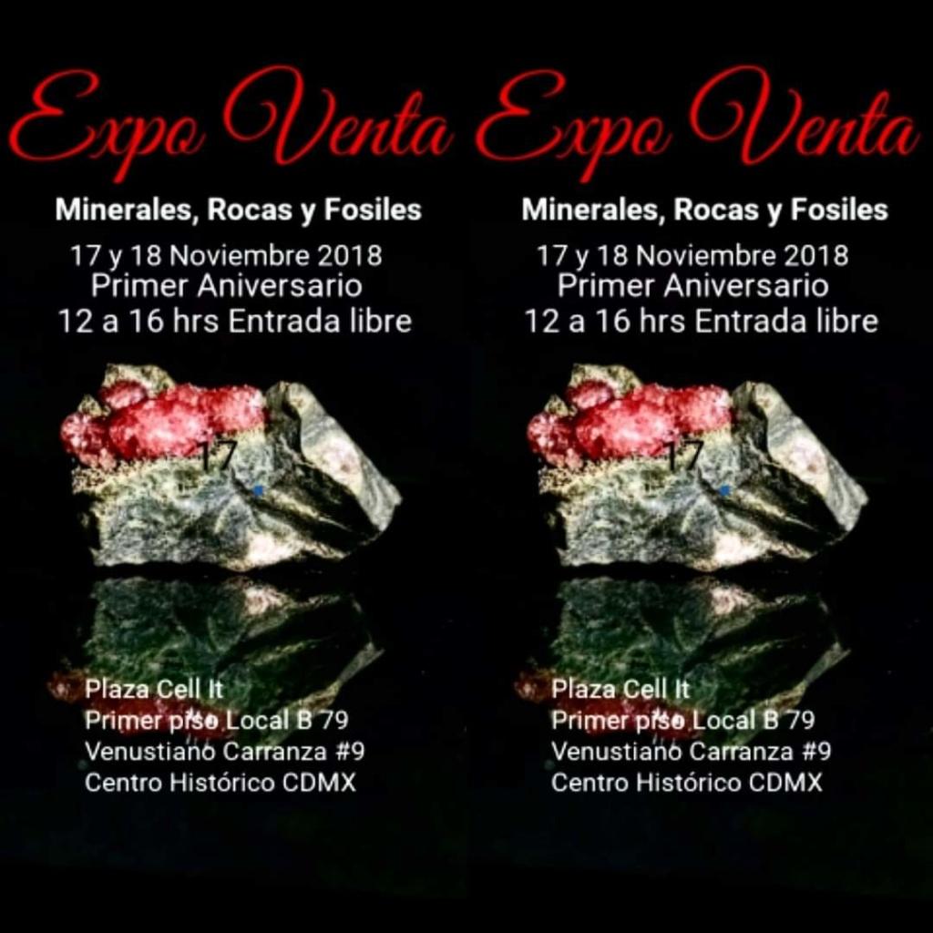 Ferias mes de Noviembre Fb_im154