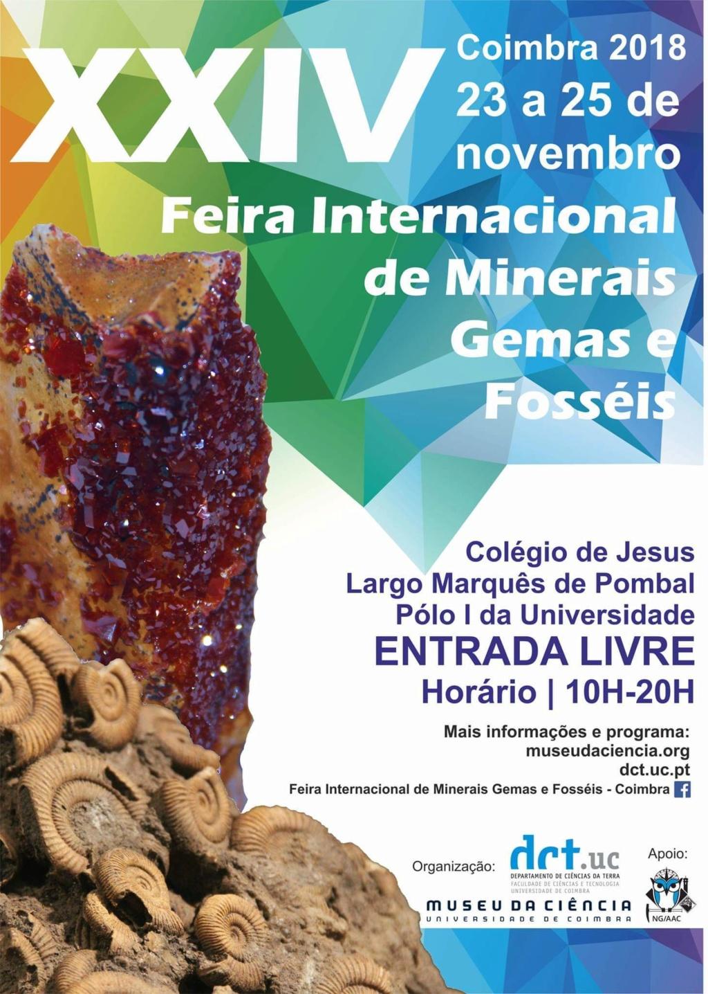 Ferias mes de Noviembre Fb_im158