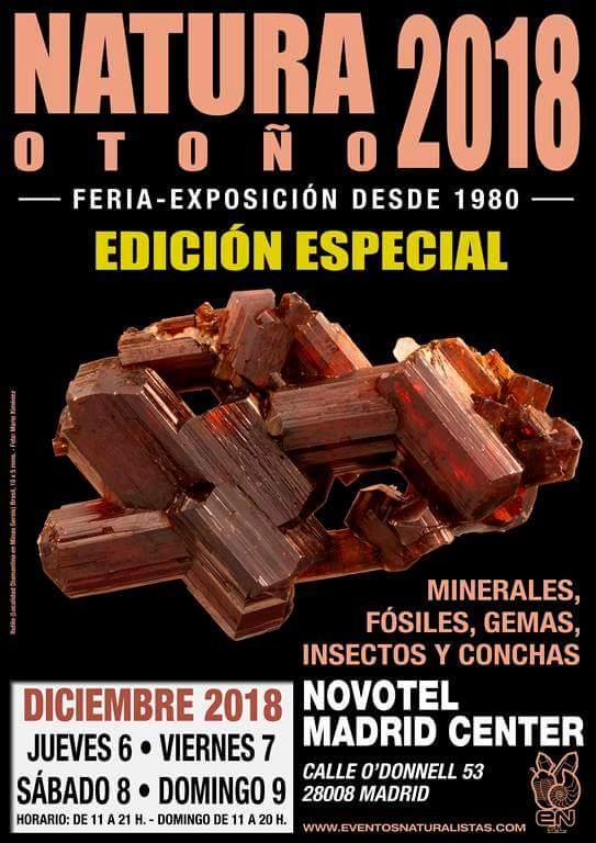 Ferias mes de Diciembre Fb_im184
