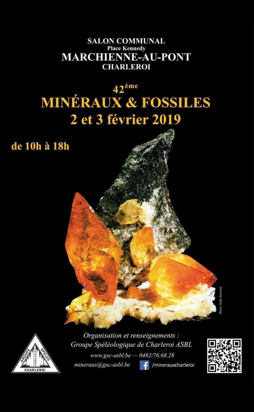 Ferias y eventos de Febrero 2019 Fb_im203
