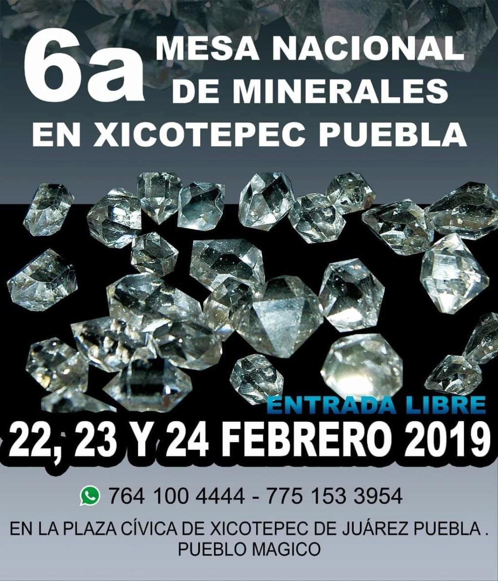 Ferias y eventos de Febrero 2019 Fb_im206