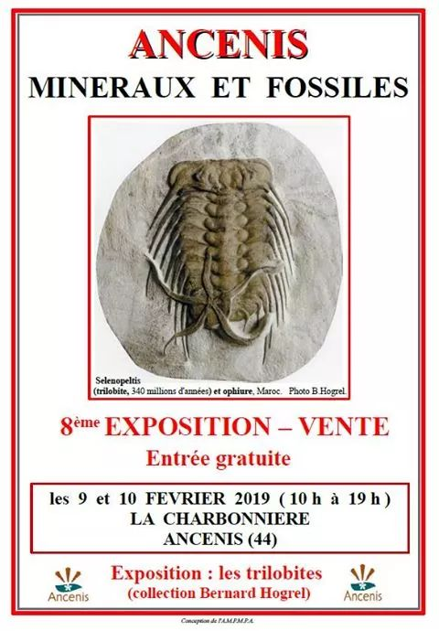 Ferias y eventos de Febrero 2019 Fb_im210