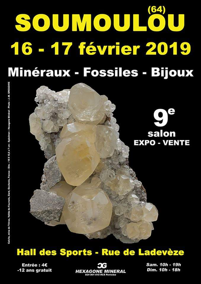 Ferias y eventos de Febrero 2019 Fb_im211