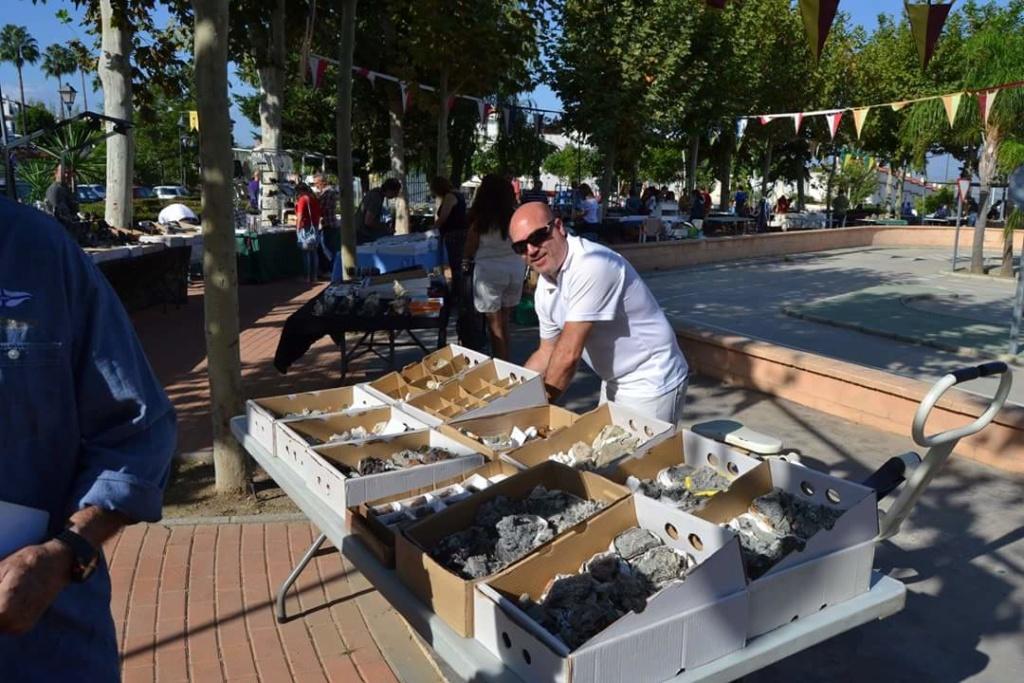 I Feria de minerales intercambio y venta de Cártama (MÁLAGA) - Página 4 Fb_img70