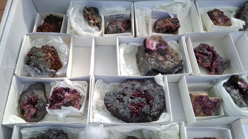 I Feria de minerales intercambio y venta de Cártama (MÁLAGA) - Página 4 Img-2023