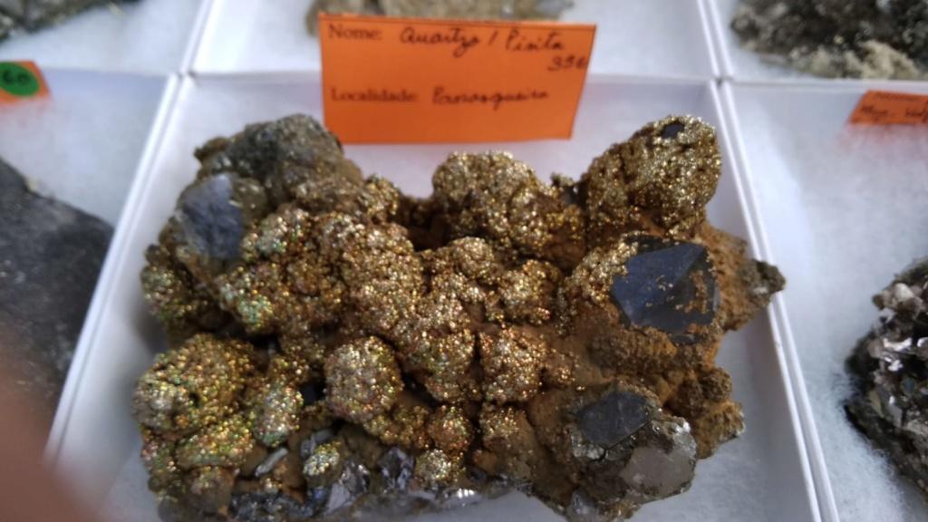 I Feria de minerales intercambio y venta de Cártama (MÁLAGA) - Página 4 Img-2027