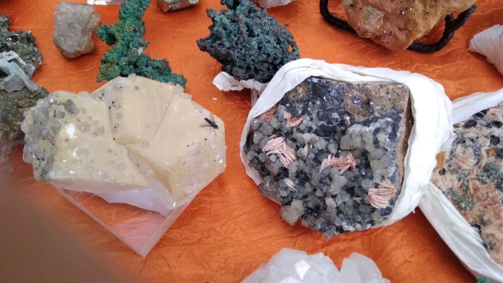 I Feria de minerales intercambio y venta de Cártama (MÁLAGA) - Página 4 Img-2029