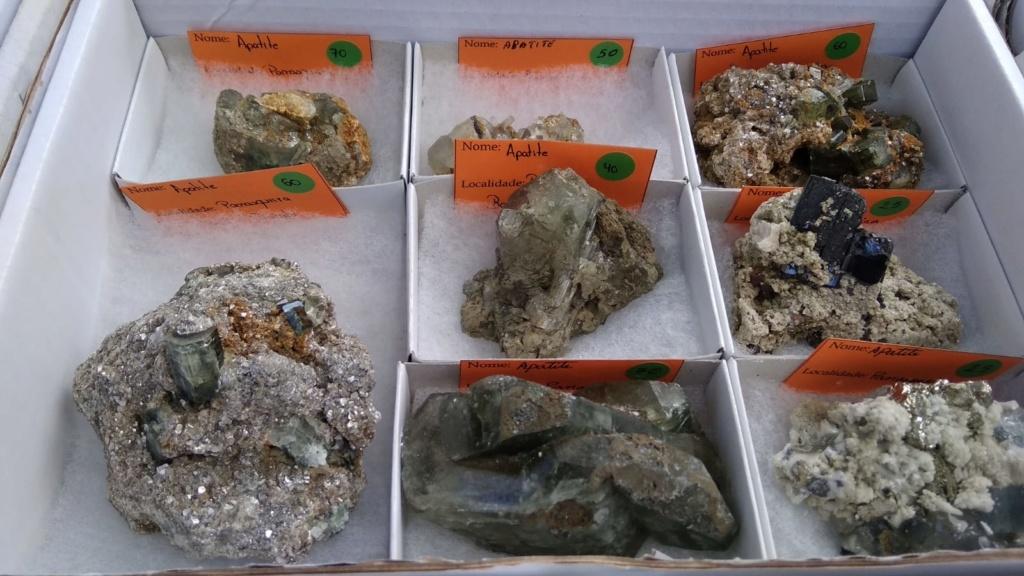 I Feria de minerales intercambio y venta de Cártama (MÁLAGA) - Página 4 Img-2030