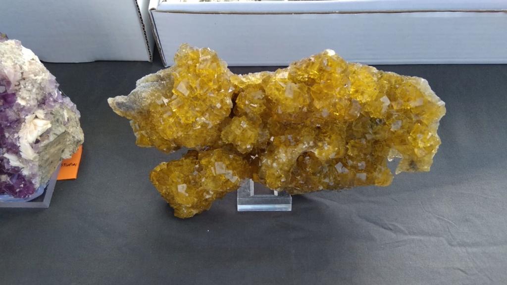I Feria de minerales intercambio y venta de Cártama (MÁLAGA) - Página 5 Img-2037