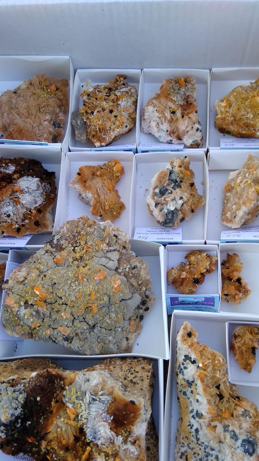 I Feria de minerales intercambio y venta de Cártama (MÁLAGA) - Página 5 Img-2069