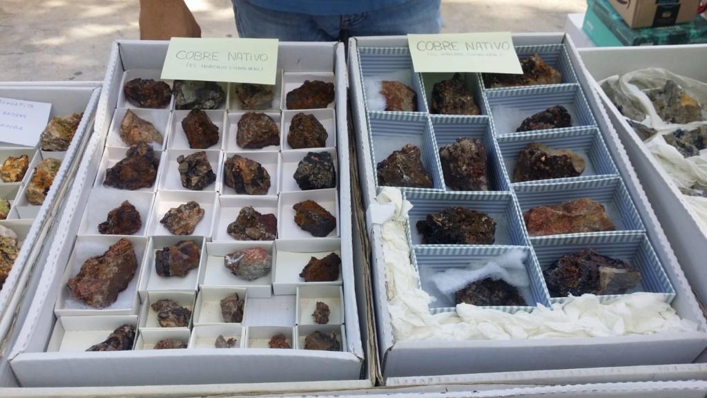 I Feria de minerales intercambio y venta de Cártama (MÁLAGA) - Página 7 Img-2082