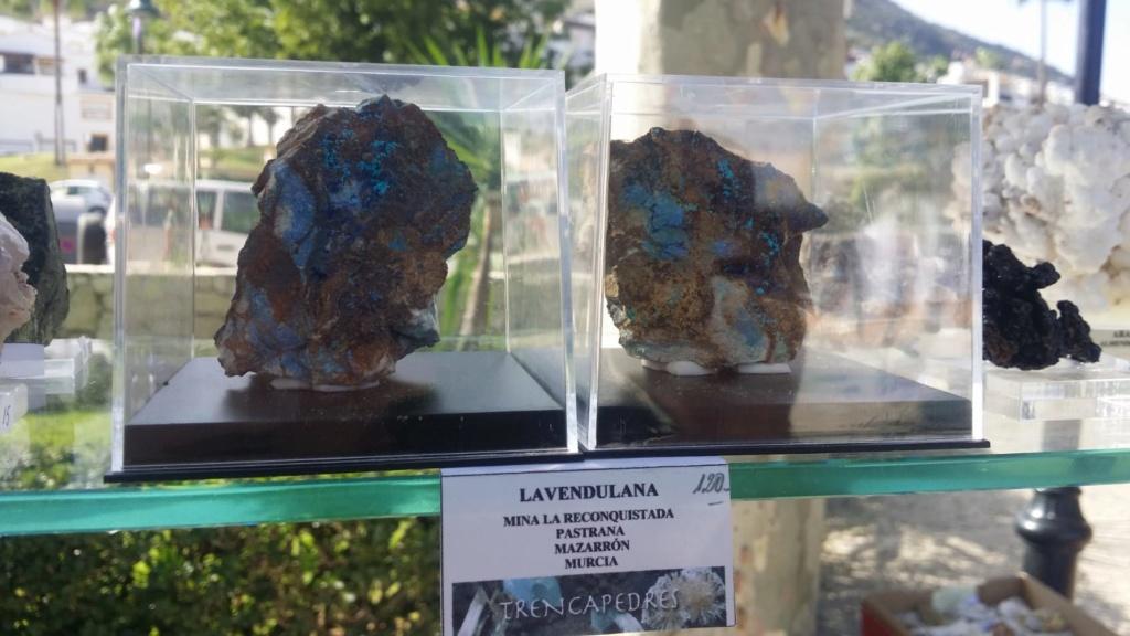 I Feria de minerales intercambio y venta de Cártama (MÁLAGA) - Página 7 Img-2083