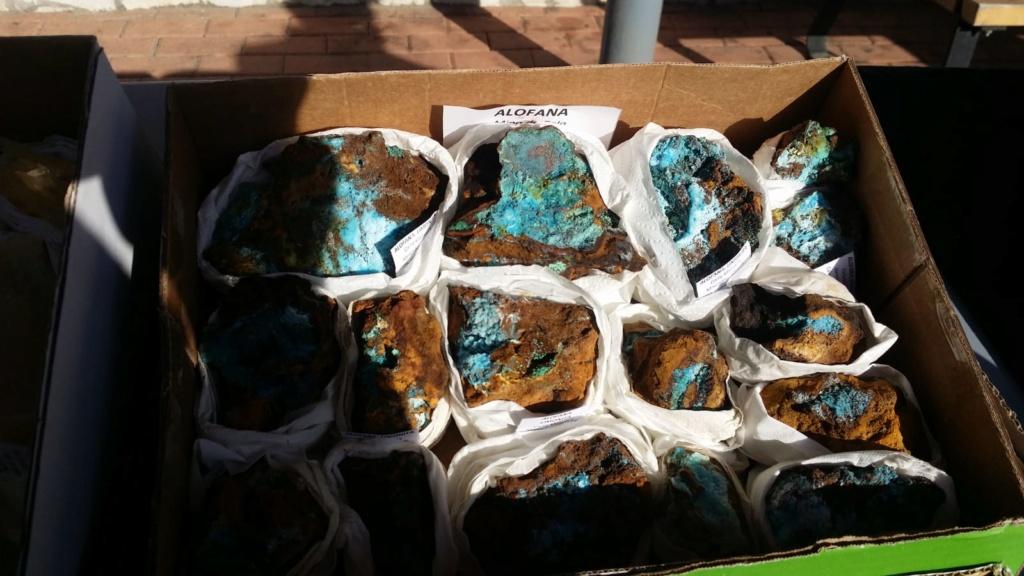I Feria de minerales intercambio y venta de Cártama (MÁLAGA) - Página 7 Img-2088