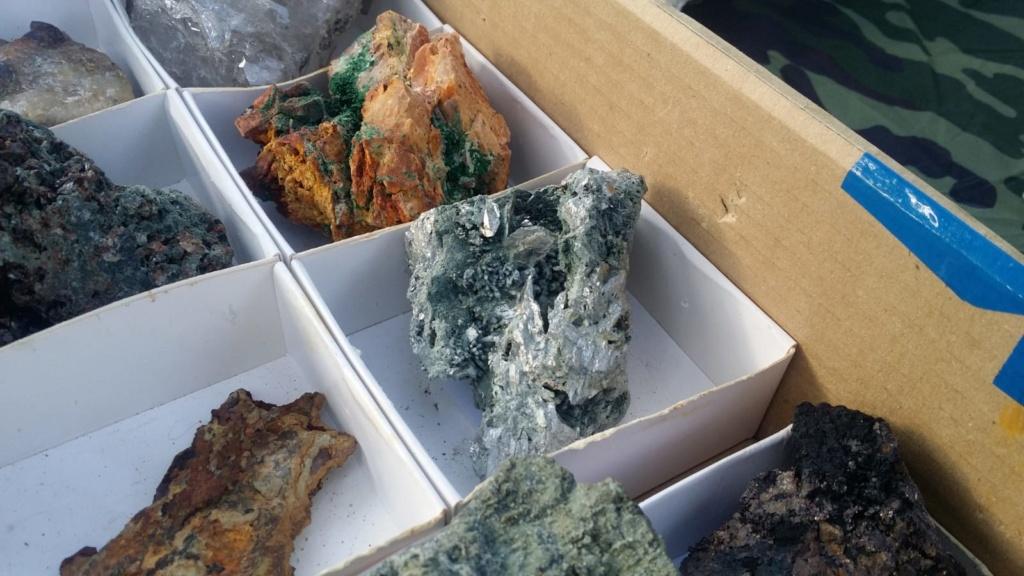 I Feria de minerales intercambio y venta de Cártama (MÁLAGA) - Página 7 Img-2102