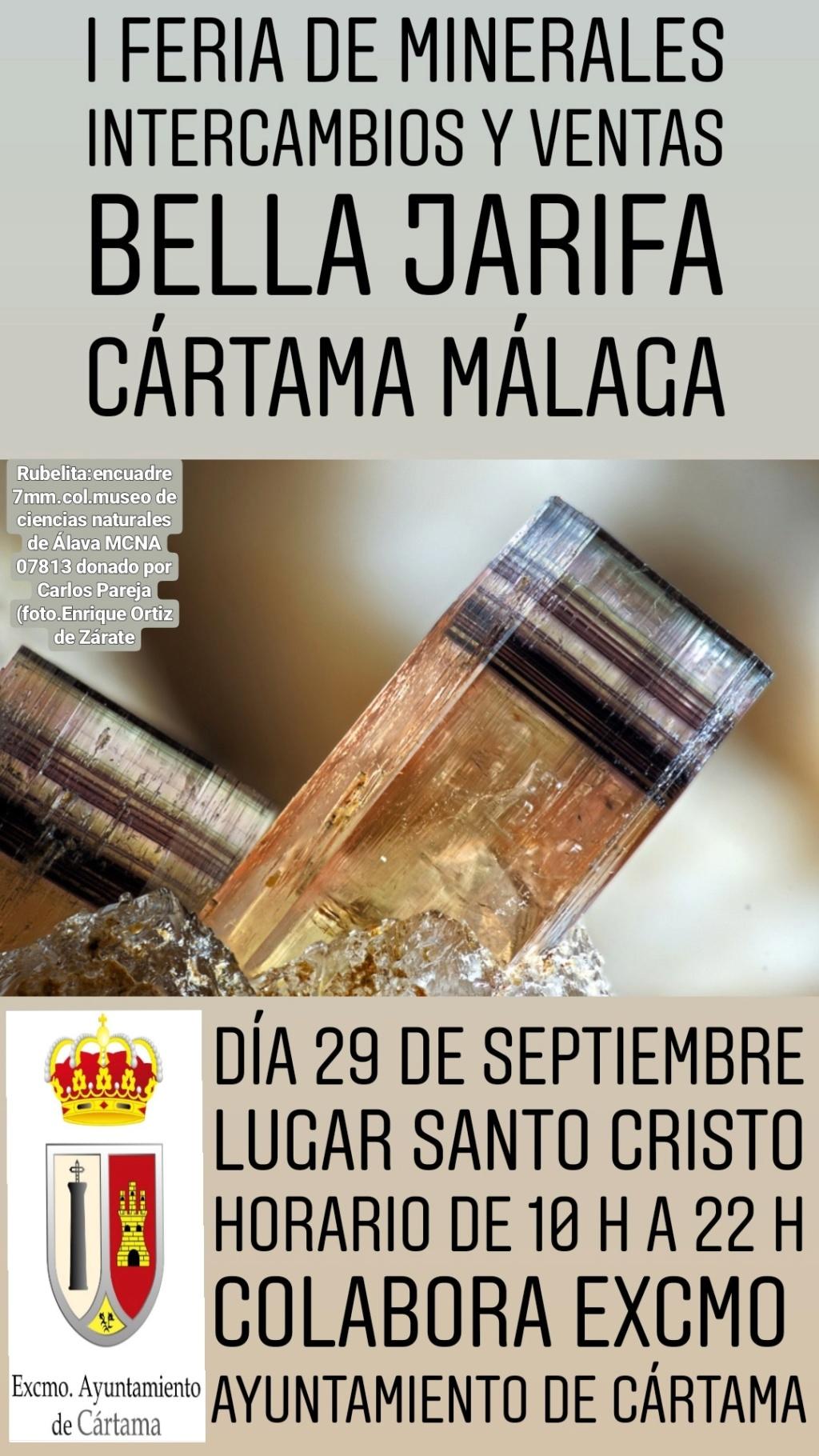 I Feria de minerales intercambio y venta de Cártama (MÁLAGA) Img_2010